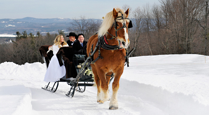 A horse drawn sleigh brings a bride and groom on a joy ride during a winter wedding